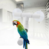Pet Birds Suction Cup Toys Paw Grinding Stand Bath Shower Perches Parrot Rack