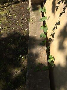 reclaimed stone lintel