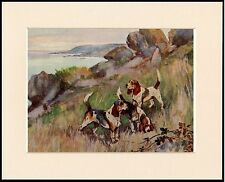 BEAGLE HOUNDS HUNTING GREAT DOG PRINT MOUNTED READY TO FRAME