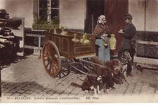 CPA -BELGIQUE-   Attelage de chiens - Laitière flamande - contravention.
