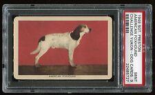 "1949 Sgt. Preston Yukon Dogs ""American Foxhound"" Psa 9 Mint Cert #22485727"