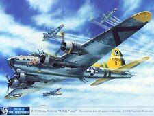 ART PRINT:  B-17 Bomber A Bit O Lace - Print by Shepherd