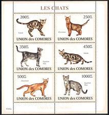 Comoro Islands - 2009 s/s of 6 Cats #1085 cv $ 14.50 Lot # 93
