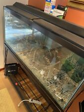 55 Gallon Aquarium With Stand , Light And Filter