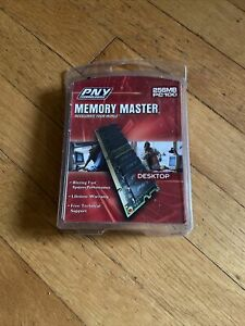 PNY Technologies Memory Master Upgrade Kit 256MB100  Computer Desktop