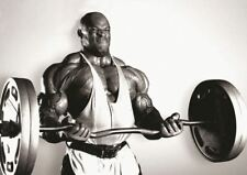 BODY BUILDER WEIGHT LIFTING RONNIE COLEMAN SMALL POSTER PRINT A3 GZ1925