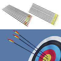 "10 pcs Fibreglass 31"" inch Archery Arrows Hunter Arrow Target & Field Practice"