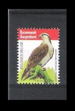 BELGIQUE - BUZIN - OISEAUX / BIRDS (BALBUZARD PÊCHEUR) - 1V**MNH