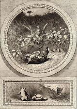 EAU FORTE / Fables de la Fontaine 1883 / LES DEUX RATS, LE RENARD ET L'OEUF
