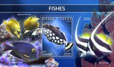 Sierra Leone 2019 fishes  S202002