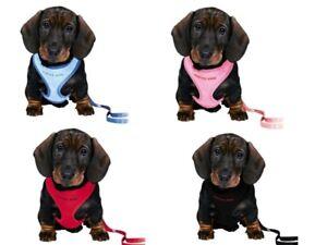 Trixie Welpengeschirr Welpengarnitur  Leine Softgeschirr Hunde Welpen Farbe