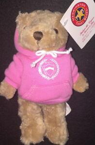 """Tokyo Aoyama Gakuin University 2002 TEDDY BEAR 6.5"""" Plush Wearing PINK Hoodie"""