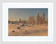 PHOTO LANDSCAPE WINTER SCENE SNOW TREES FROZEN FOREST FRAMED ART PRINT B12X8584