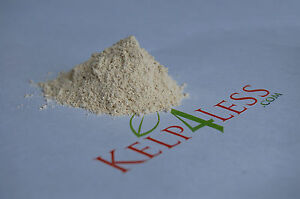 Calcium Carbonate Limestone Powder 22 Lb FreeShip CaCO3