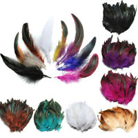 100pcs Beautiful Rooster Pheasant Tail Feathers Long Costume Decoration  US