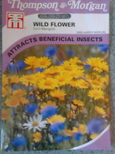 wild flower corn marigold. flower seeds.  Thompson and morgan. fresh stock.