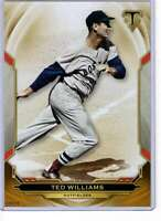 Ted Williams 2019 Topps Triple Threads 5x7 Gold #46 /10 Red Sox