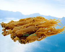 Authentic 6~7 years Rare Asian Panax Korean Red Ginseng Roots 1000g