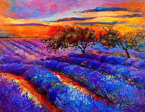 A0 SIZE CANVAS PRINT sunrise  VIC  SA NSW LANDSCAPE OUTBACK SUNSET PAINTING