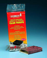 ** NEW Catchmaster Baited Insect Roach Spider Cricket Glue Trap Case 96 TRAPS