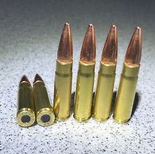 6- 300 AAC BLACKOUT RUBBER FILLED PRACTICE ROUNDS/ Dummy Rounds/ Snap Caps.