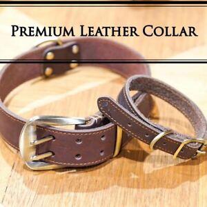 Premium Quality Handmade Genuine Leather Pet Dog Collar Full Brass Fitting XS-XL