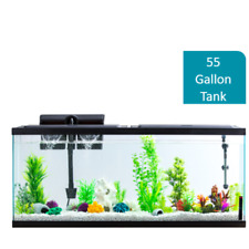 NEW 55 Gallon Fish Tank Aquarium Glass Terrarium Pet Reptiles Fishes Aqua Home
