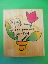 rubber stamp flower pot bloom where u r planted kathy davis inkadinkado