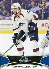 16/17 UPPER DECK AHL #70 AARON PALUSHAJ CLEVELAND MONSTERS *30991
