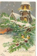 Vintage Postcard Christmas Greeting post 1906 Fort Valley CA Small birds in Pine