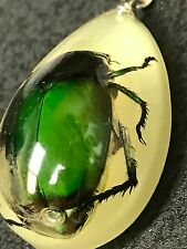 """Egyptian Scarab Beetle in Resin Sand Charm Tibetan Silver 18"""" Necklace D621"""