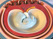 Human pregnant fetus uterus anatomy anatomical medical education model New