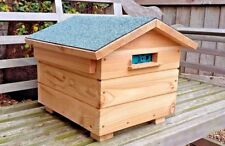 Dragonfli Wooden Bumble Bee Hive - Bee House Hotel with Live Colony of Bees