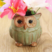 1/2/5 Pcs Ceramic Owl Flower Pot Succulent Planter Container Home Garden Decor