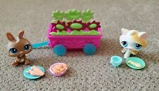 "Littlest Pet Shop - ""Picnic Set"" with (2) Pets and accessories - Very Cute!"