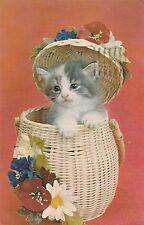 Vintage Postcard Kitten Plays in Basket 1975 Lusterchrome Cat Card