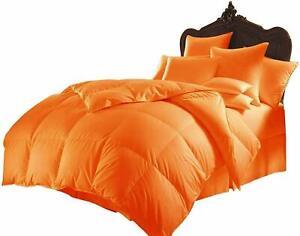 5 PC(Comforter+Pillow Case)200 GSM 1000 TC Egyptian Cotton US Sizes & Colors