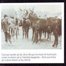 2003  --  FOIRE AUX MULES DE LA SAINT MARTIN A PAU EN 1913  U264