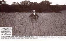 Southwick, Fareham. Wheat Crop Grown by Mrs Palmer, Castle Farm. Hadfield's Ad.