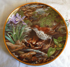 Wood Thrush Plate Favorite American Songbirds Coa