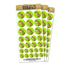 Cheeky Chipmunk Removable Matte Sticker Sheets Set