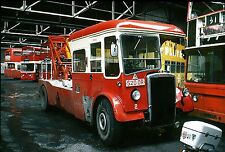 Plymouth City Transport and CityBus Buses, Set A 11 6x4 ins Colour Print photos