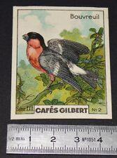 CHROMO 1936 CAFES GILBERT OISEAUX BIRDS BOUVREUIL