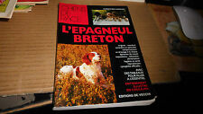 chien de race - l'epagneul breton
