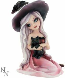 Nemesis Now Rosa Witch Woman with Black Cat Gothic Wiccan Pagan Gift 15cm