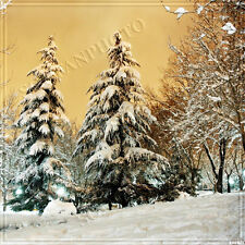 Christmas/Winter 10'x10'Computer-painted Scenic Photo Background Backdrop BHF077