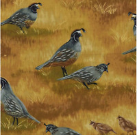 Timeless Treasures Nature Outdoors C8538 QUAILS cotton Fabric by the yard