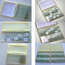 10-200 Microscope Professional Glass/ Plastic Slice Prepared Slides Specimen