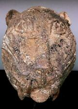 Vintage Tribal Large Benin Bronze Léopard Tête --- Nigeria BN 48