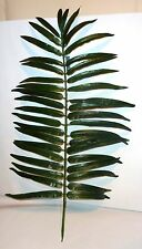 Palmblatt  dunkelgrün - Palmenwedel -  Palmenblätter-  Palmzweige XXL 93 cm